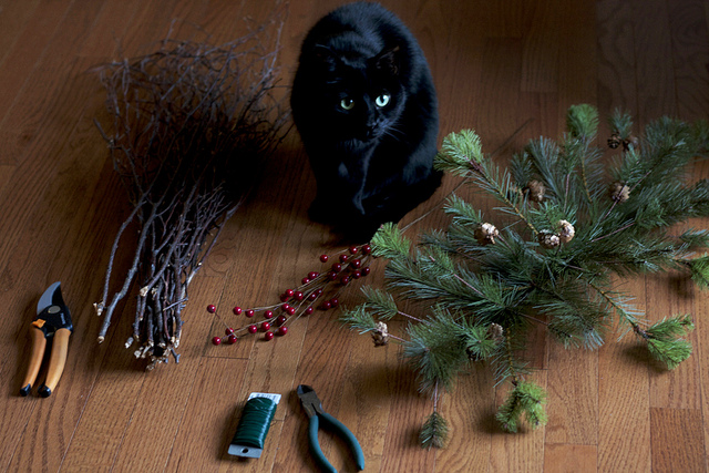 http://diybytiffany.com/wp-content/uploads/2013/12/Winter-Garland-DIY-starting.jpg