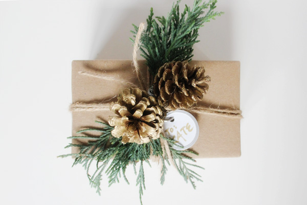 diy gift wrap sprigs pinecones final